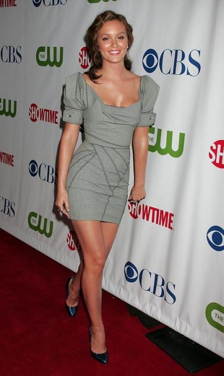 Leighton Meester StyleChi Grey Panel Dress Decolletage