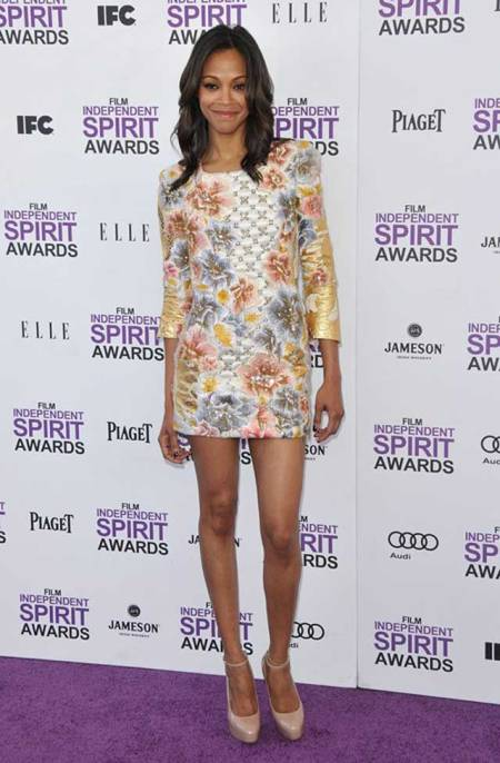 Zoe Saldana StyleChi Best Looks Independent Spirit Awards Red Carpet 3D Floral Embroidered Long Sleeve Mini Dress Nude Heels